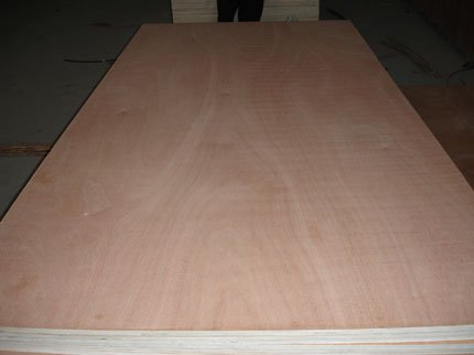 commercial_plywood_2231_1